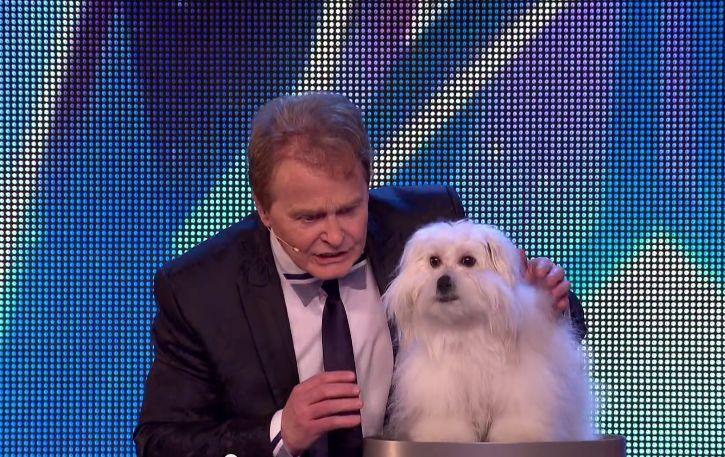 """Aconteceu no programa de talentos """"Britain's Got Talent"""", quando a cadela com o nome de Wendy foi dada a conhecer para todo o mundo, quando o seu dono decidiu mostrar as habilidades de ambos no programa de talentos."""