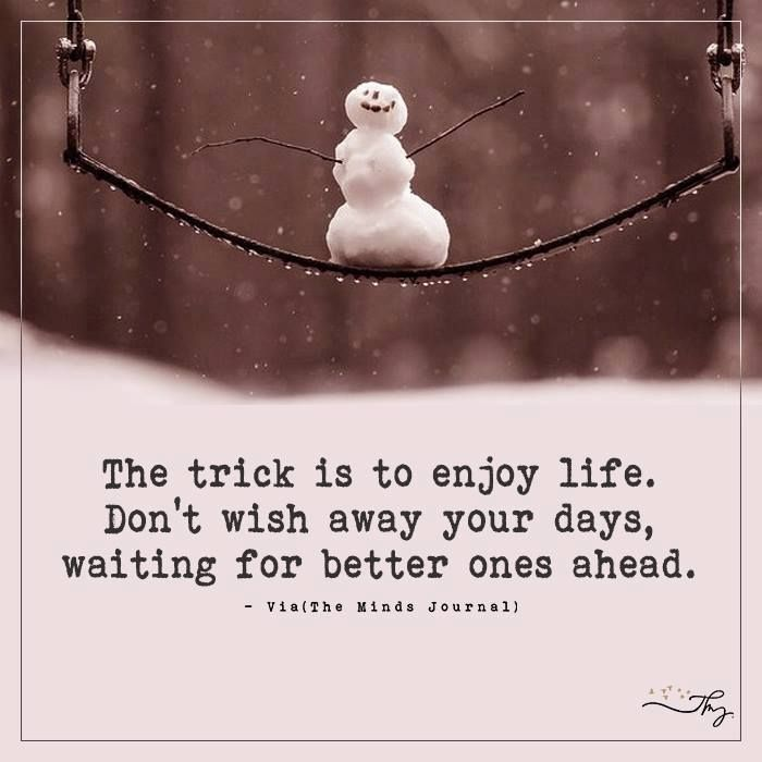 The trick is to enjoy life - http://themindsjournal.com/the-trick-is-to-enjoy-life/