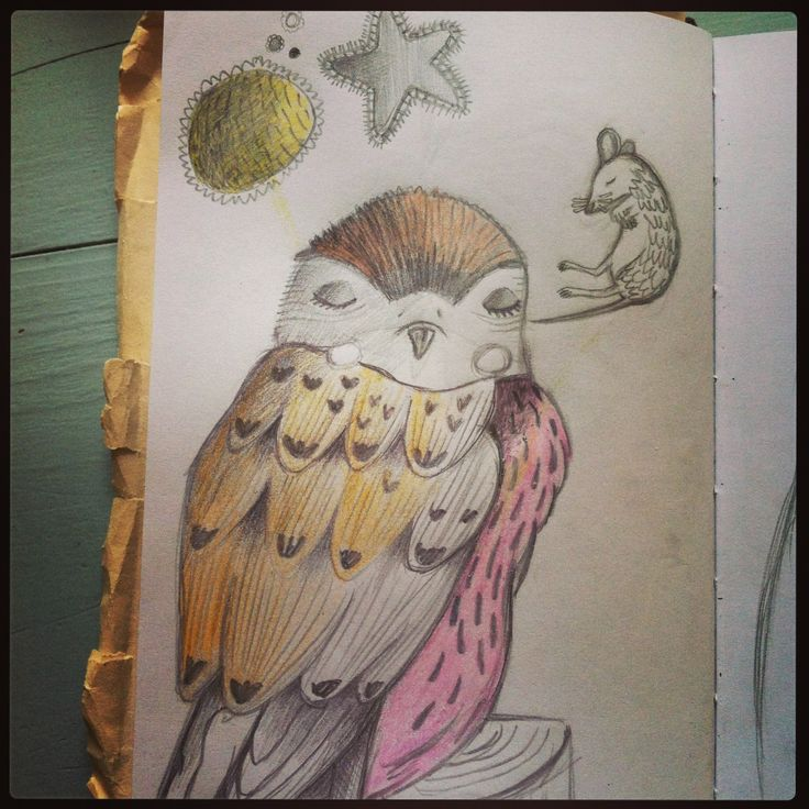 Sketch for my blog 'My Sketch of the day'... One of my favorite birds http://www.mysketchoftheday.com