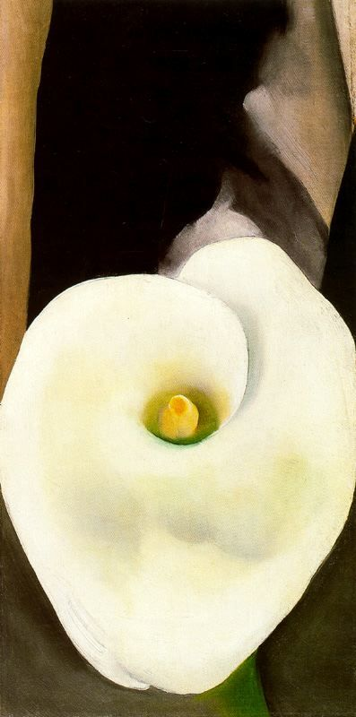 Georgia O'Keeffe. Lily, White with Black-1927. http://img-fotki.yandex.ru/get/4702/37844013.b4/0_5ea62_882f5c5_orig