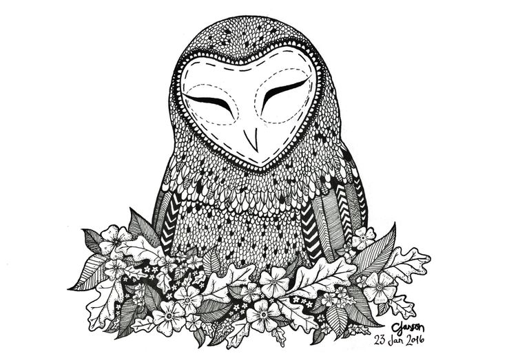 A quirky little owl. She's so cute and surrounded by oak leaves. https://www.facebook.com/californiaillustration/