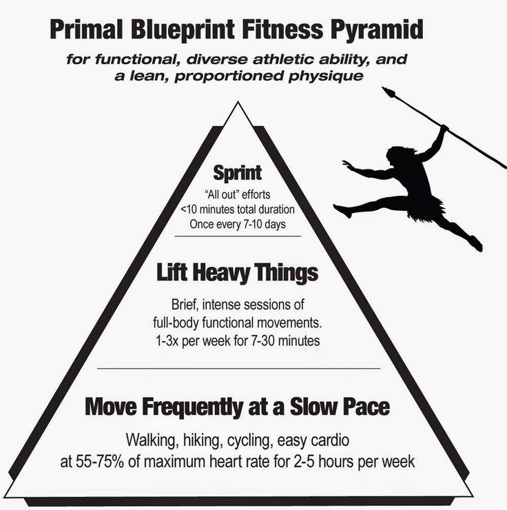 Paleo   Primal Basics Primal Blueprint Certified Expert u2013 Elle - fresh primal blueprint omega 3