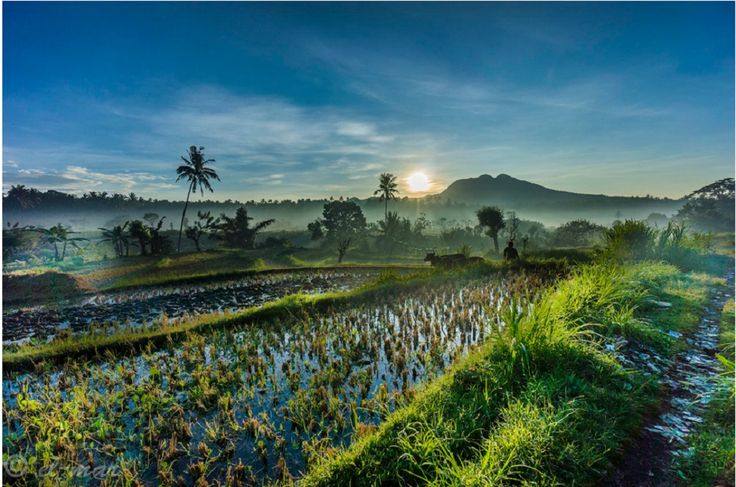 Bali, Indonesia | 1,000,000 Places