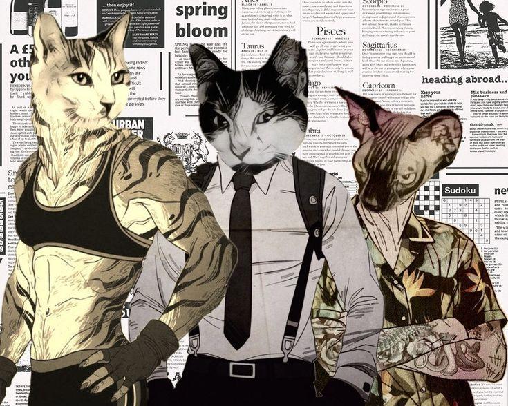 Kittysquad