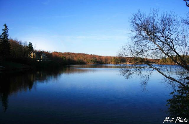 M-ii Photo : La Pennsylvanie - Tannersville