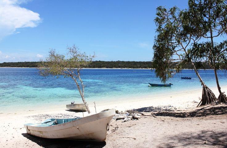 PADI 5-Star Dive Resort in Dili Atauro Island. Diving Snorkeling PADI Dive Courses