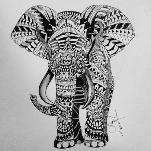 elephant drawing image transfer ideas pinterest