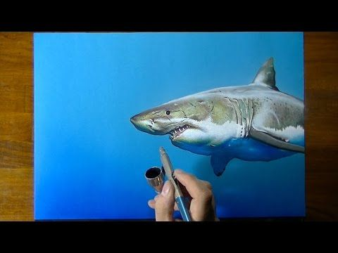 Drawing Time Lapse: a cute shark - art on blue paper - YouTube