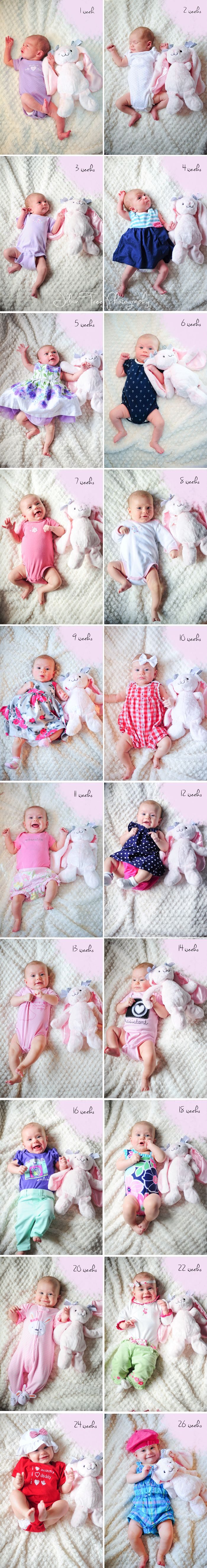Baby's First Half Year Growth - pictures with favorite stuffed animal to see growth