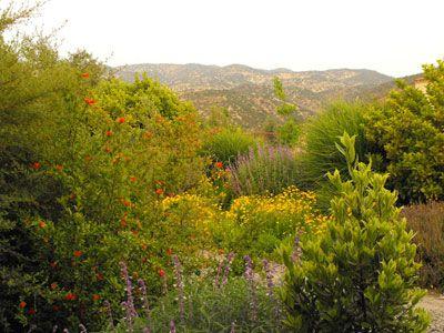Jardin, CRISTOBAL ELGUETA. Jardin sustentable.