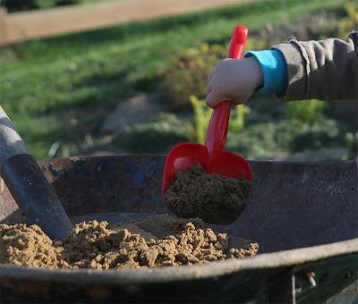 Tesařík zahradní: pískoviště