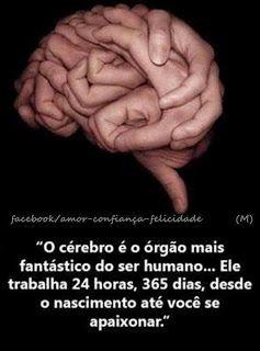 """""""O cérebro é o órgão mais fantástico do ser humano...Ele trabalha 24 horas, 365 dias, desde o nascimento até você se apaixonar."""""""