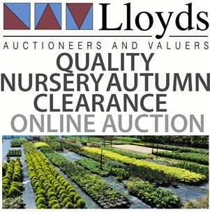 QUALITY Nursery Autumn CLEARANCE *OPEN FOR BIDDING NOW*