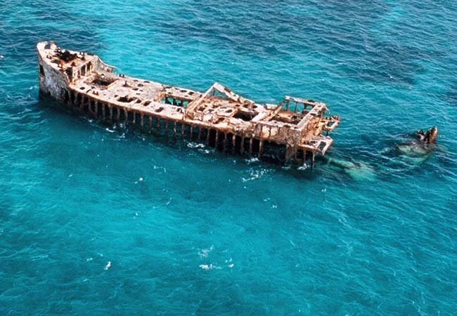 During prohibition, Bimini served as a liquor warehouse. Hooch was stored by Rum runners both ashore and on ship called the S.S. Sapona that still rests where it grounded during a hurricane in 1926.  The concrete ship, as it is nicknamed, is one of the Caribbean's very best shallow water wreck sites. Been IN there!.