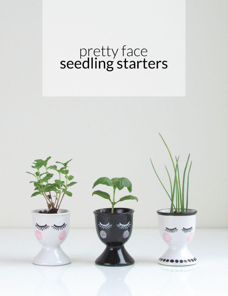 pretty face seedlings franois et moi 706 best Floral images on Pinterest