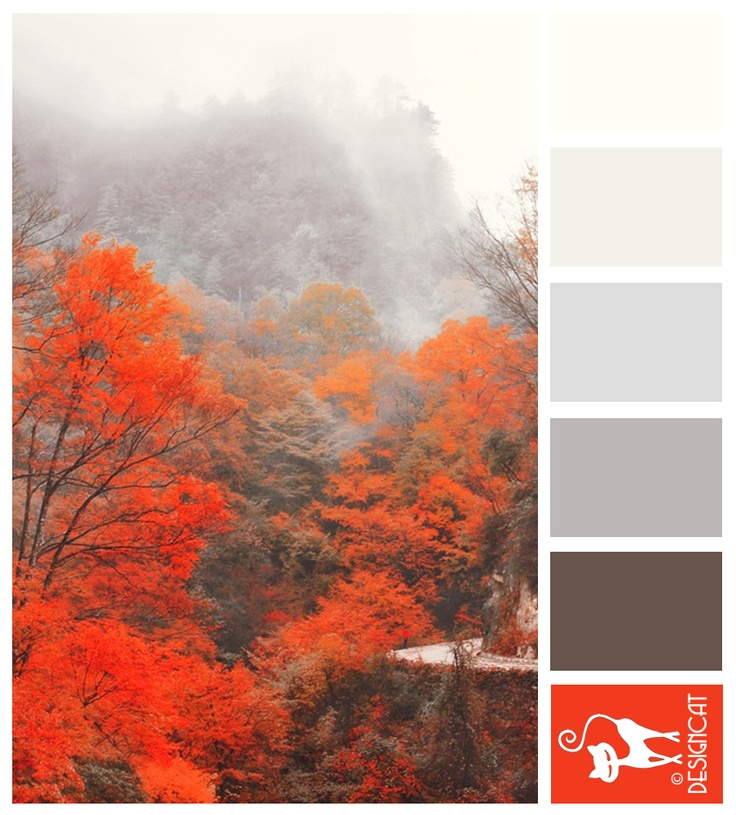 Oh wow! Love the firey red with the misty grey! Japanese Mist - Orange, Grey, Brown - Designcat Colour Inspiration Pallet