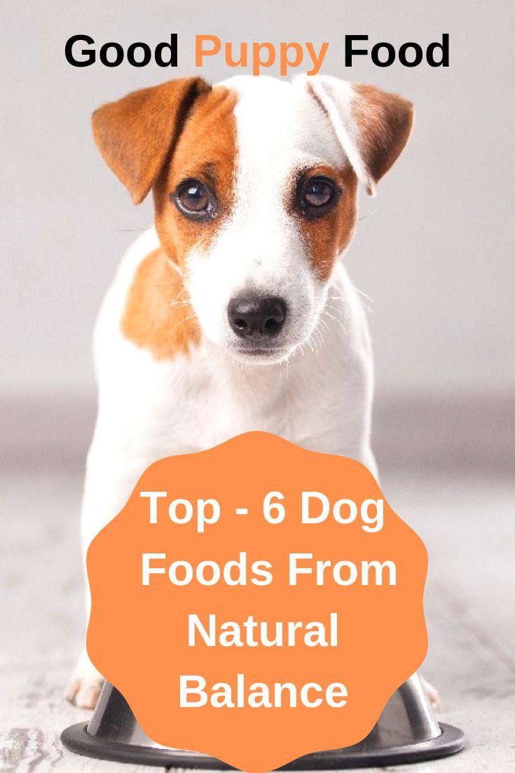 If You Ve Got A Dog With Intolerances Chances Are You Know All