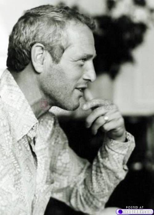 eye candy paul newman 12 Afternoon eye candy: Paul Newman flashback (27 photos)