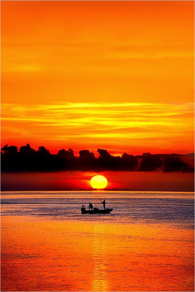 Sunset silhouette photography ~ Dreamy Nature