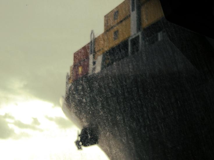 Msc Daniela, port of Gioia Tauro