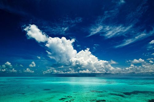 ...cloudy perfection...