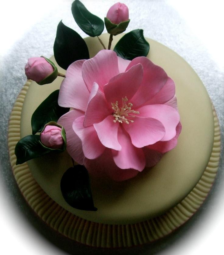 Camellia Cake