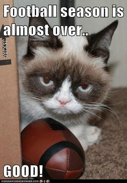 I have a new level of love for Grumpy Cat!!!