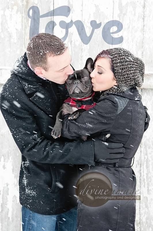 Divine Image Photography - Couples, love, dogs, snow, photography