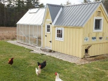 The organic vegetable garden is integrated with the greenhouse and chicken shed
