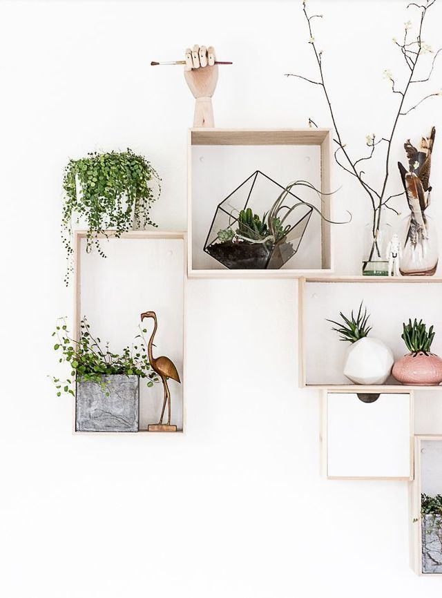 Brainy Days Special: 7 x urban jungle in huis