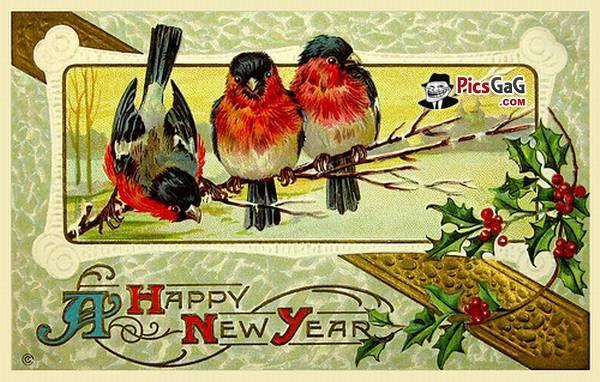 http://www.amusingfun.com/wp-content/uploads/2013/12/new-year-greeting-card.jpg