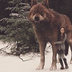 I will always protect you Renesmee - Jacob  I love my Jacob - Renesmee