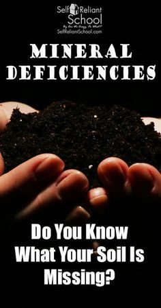 How mineral deficiencies in soil affect your health, and what you can do to replace those missing minerals. #beselfreliant