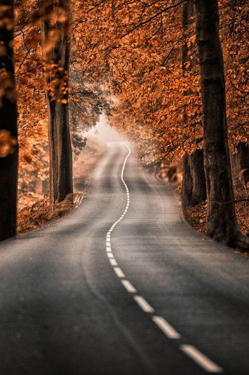 Autumn Pixdaus