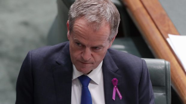 Bill Shorten should be on a roll, but he's manifestly divorced from reality. Bill Shorten has never been more dominant than this February. His Australian Labor Party leads the Coalition convincingly in many polls, while the public has seen a petulant side to Malcolm Turnbull in question time that is rather unattractive. So the Opposition Leader's performance during the past fortnight should have been a success.