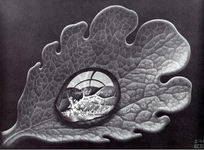 Dewdrop. M.C. Escher