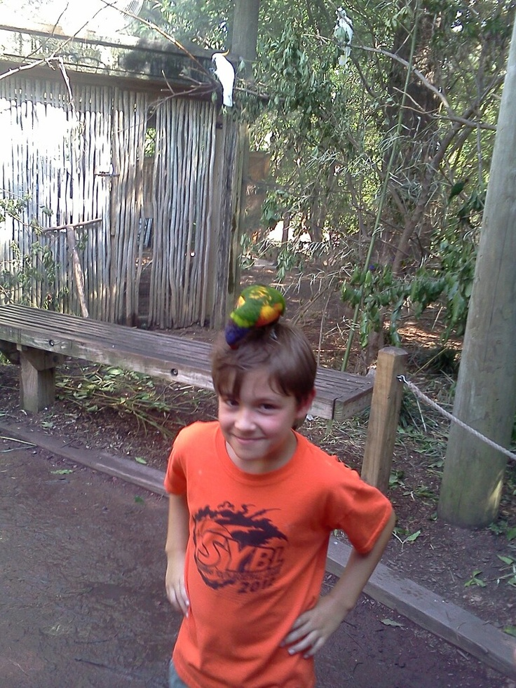 Umm that's a bird on your head