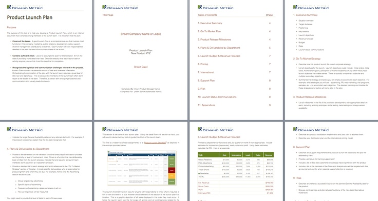 Product Launch Plan Template - Use this tool to create a Product - product plan template