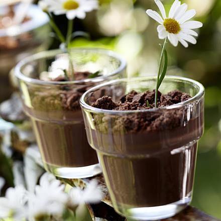 Süße Topfpflanzen aus Schokopudding Rezept | LECKER