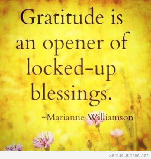 e2d905eca045779e731acb699e8cbbe0--practice-gratitude-attitude-of-gratitude.jpg