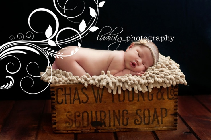 Boston newborn PhotographerNewborn Photographer, Babies Photography, Newborns Photographers, Newborns Baby Photography, Newborn Baby Photography, Newborn Babies, Boston Newborns, Ludwig Photography