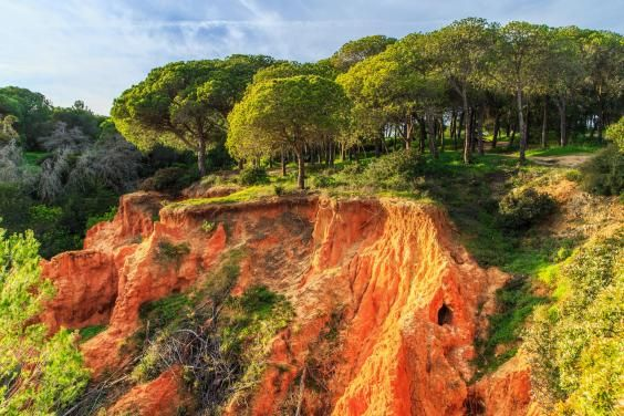 Chicest places to eat, drink and stay in the #Algarve region - via Evening Standard News 19-07-2017   There are golden cliffs surrounding sandy beaches, gorgeous seaside restaurants, and more sunny days than anywhere else in Europe. Portugal's Algarve has all of the requisites of a fabulous summer holiday, yet remains relatively obscure except to British golfers, making it all the more appealing.