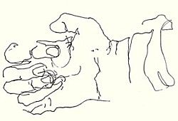 Develop Hand Coordination by Practicing Blind Drawing: Blind Contour Drawing Exercise