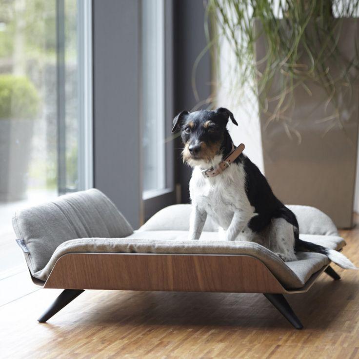 17 best images about dog on pinterest home dog beds and for Interior design dog bed