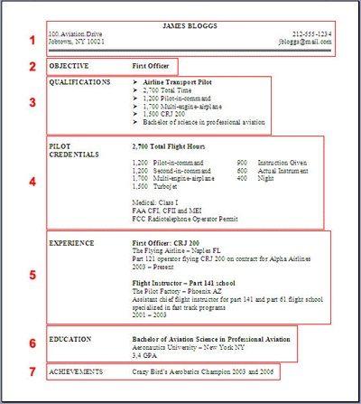 Professional Pilot Resume Template - http://jobresumesample.com/531/professional-pilot-resume-template/