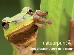 Natuurpunt vzw is een natuurbehoudsvereniging die in Vlaanderen en Brussel actief is. De werking steunt op drie pijlers: natuureducatie, natuurbeheer en natuurstudie. Anno 2014 heeft Natuurpunt 21.958 hectare natuurgebied in beheer. Natuurpunt is met circa 95.000 leden (2014) de grootste Vlaamse natuurvereniging