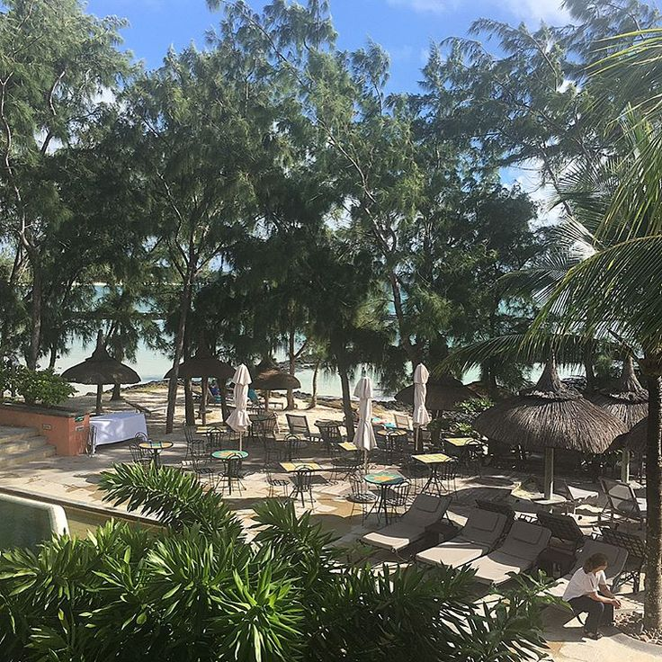 Good morning from the paradise ☀️��❤ . Heute ist mal wieder Wochenwechsel und ich bin schon in der 21 Woche! Wahnsinn, die Hälfte ist geschafft ☺️������ . Schönen Feiertag ihr Lieben und genießt das schöne Wetter in Deutschland ���� . . . #paradise #goodmorning #thursday #mauritius #honeymoon #happy #blessed #inlove #bellemare #lapalmeraie #palmar #beach #justmarried #indianocean #couple #travel #instatravel #instalike #instadaily #instagram #pregnant #wochenwechsel #21ssw #mommytobe…