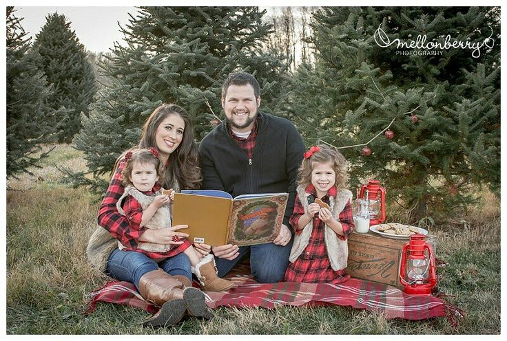 Family Christmas mini session at Christmas tree farm, milk and cookies, lanterns, the night before Christmas