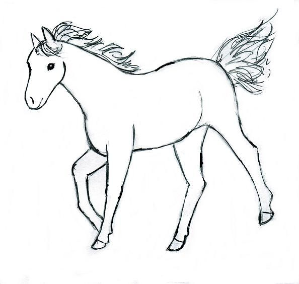 horse drawing step by step - Images For Drawing For Kids