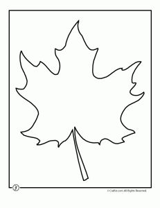 lots of leaf templates! Great for all sorts of Crafts